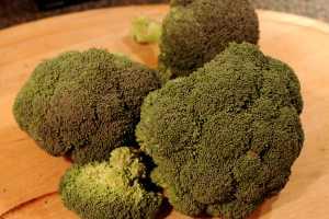 Gratinert brokkoli